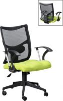 ER 5006 Mesh Lowback Chair