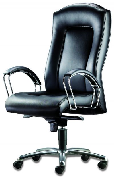 LT 110-Tauras Leather Highback Chair