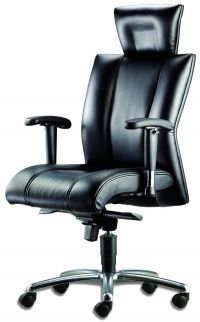 LT 130-Cancer Leather Highback Chair