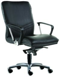 LT 192-Capricorn Leather Mediumback Chair