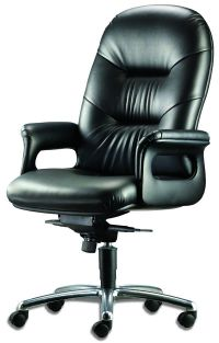 LT 210-Pisces Leather Highback Chair